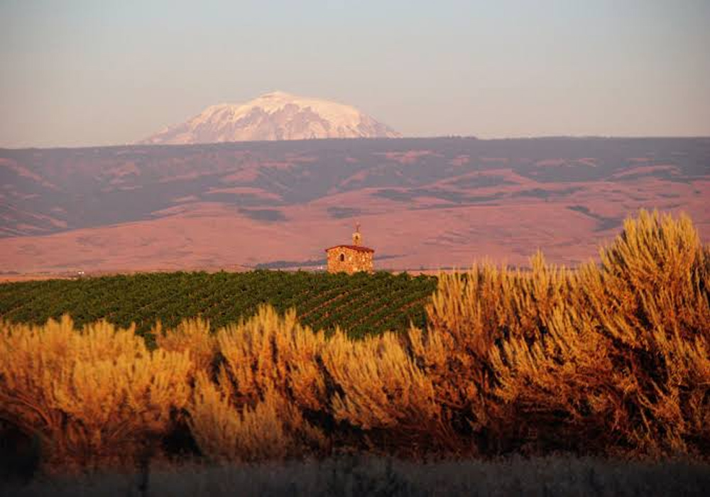 Wine Yakima Valley